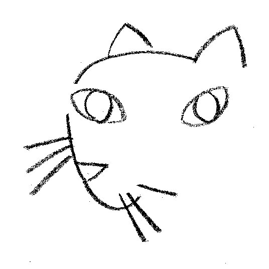 kcdportrait_cat_sm
