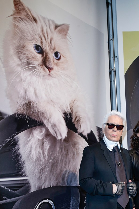 karl-choupette-vogue-4feb15-getty_b_592x888