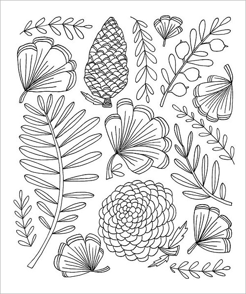 Congdonbotanicals