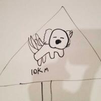 Dylan_koalaleap