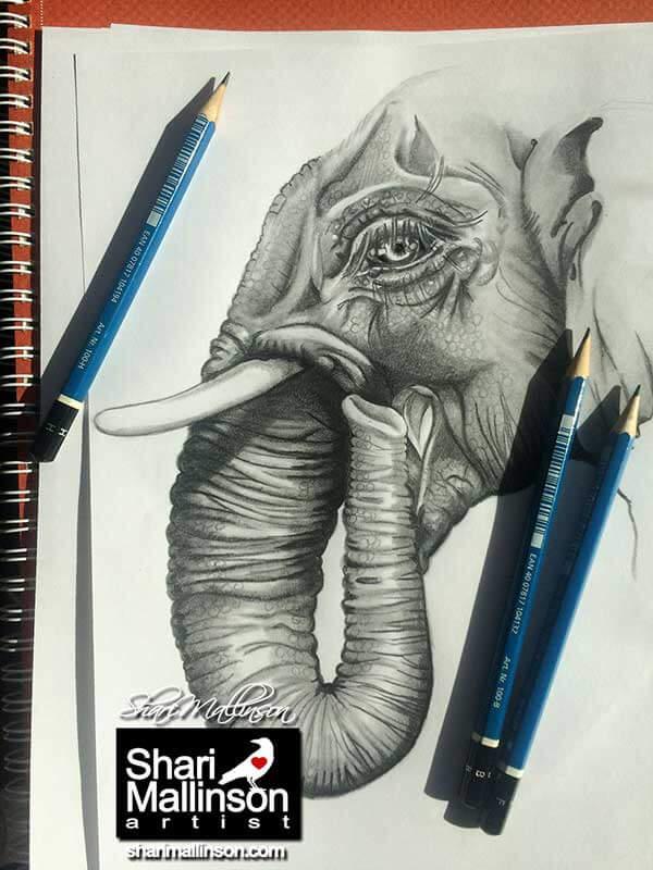 ElephantShariWMSmall