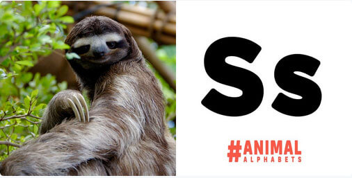 animal_alphabet