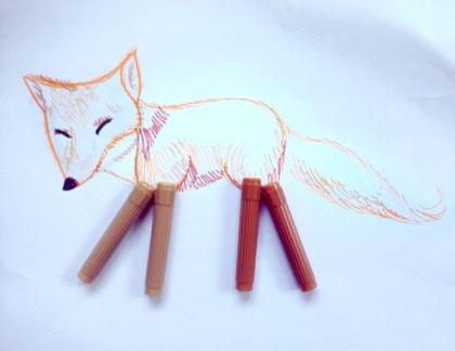 fox_marker