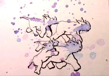 CM Rhino2