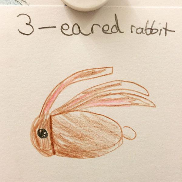 rabbitbymaya